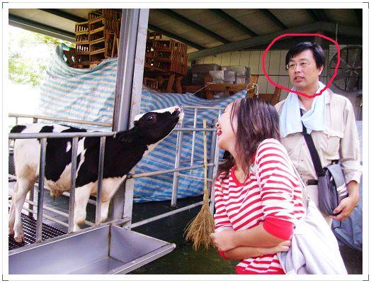 我與牛兒相呼應