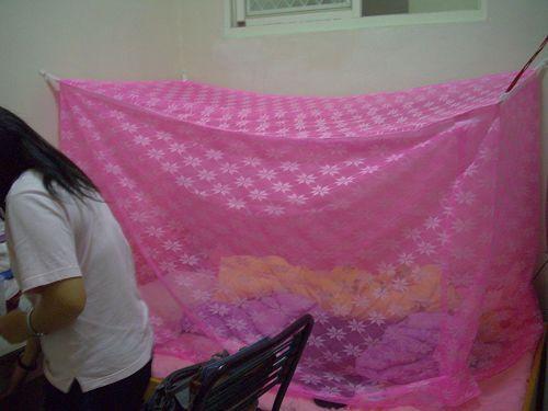 阿娟&阿娟很像菜罩的蚊帳