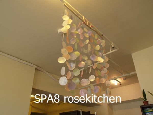 sP8122749.JPG