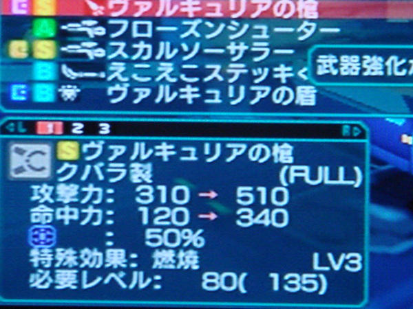 DSC05182.JPG