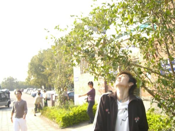 在看飛上去的竹蜻蜓