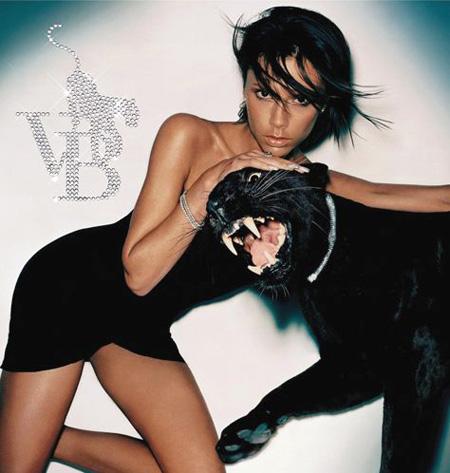 Victoria_Beckham_VB_album_cover.jpg