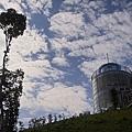 新竹縣尖石鄉數碼天空餐廳與樹對話.jpg