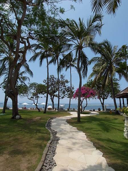 印尼峇里島THE WESTIN RESORT NUSA DUA BALI:泳池 (12).JPG