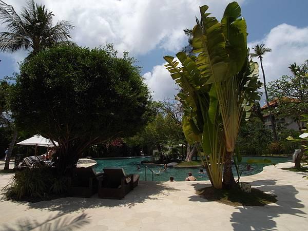 印尼峇里島THE WESTIN RESORT NUSA DUA BALI:泳池 (1).JPG