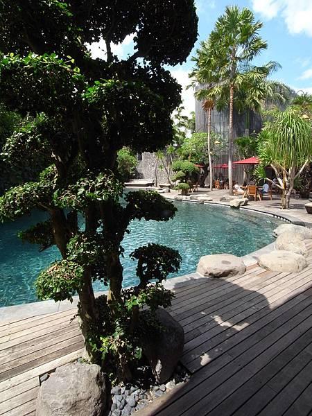 印尼峇里島SENTOSA PRIVATE VILLAS AND SPA,BALI:泳池 (10).JPG