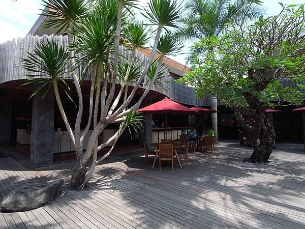 印尼峇里島SENTOSA PRIVATE VILLAS AND SPA,BALI:泳池 (1).JPG