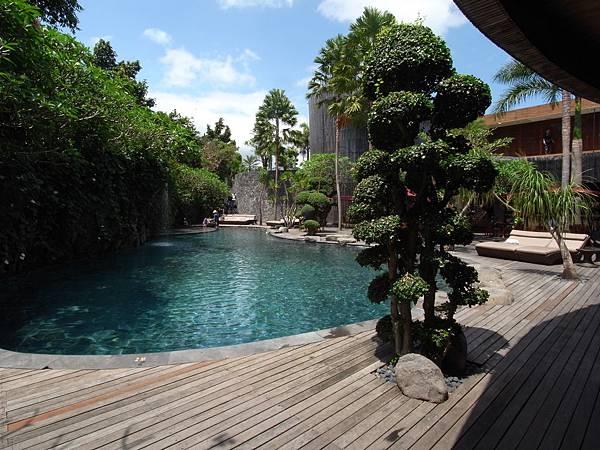 印尼峇里島SENTOSA PRIVATE VILLAS AND SPA,BALI:泳池 (6).JPG