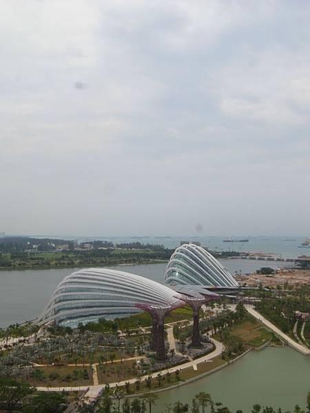 新加坡濱海灣花園【盜攝版】 (14)