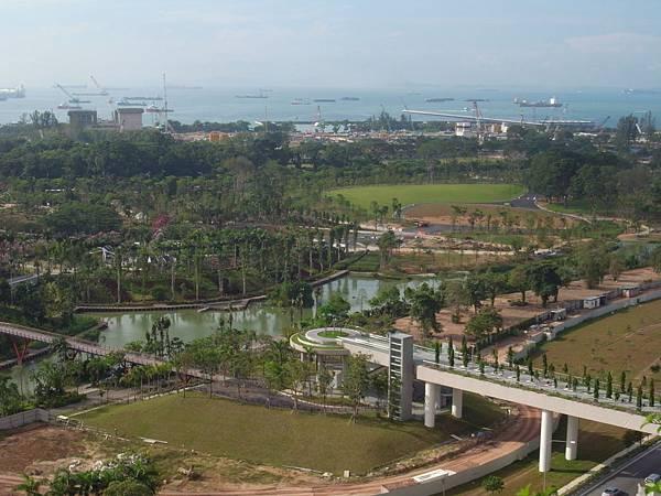 新加坡濱海灣花園【盜攝版】 (1)