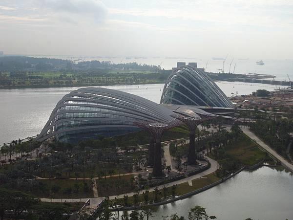 新加坡濱海灣花園【盜攝版】 (2)
