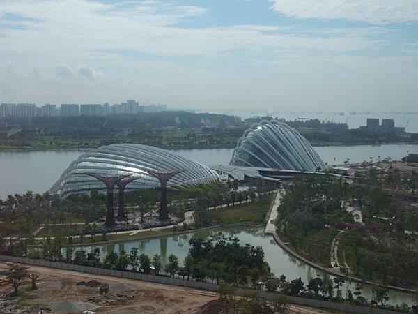 新加坡濱海灣花園【盜攝版】 (3)