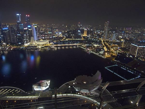 新加坡金沙酒店:SkyPark (24)