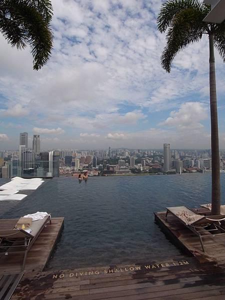 新加坡金沙酒店:SkyPark (3)