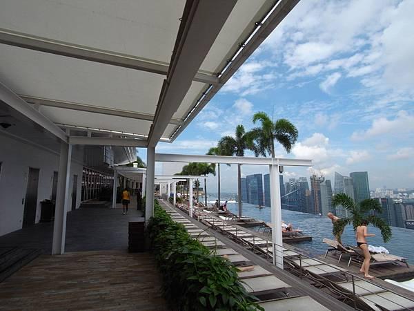 新加坡金沙酒店:SkyPark (4)