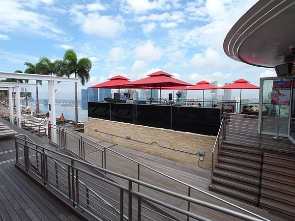 新加坡金沙酒店:SkyPark (5)