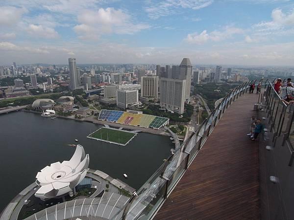 新加坡金沙酒店:SkyPark (6)