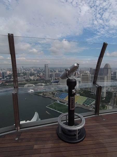 新加坡金沙酒店:SkyPark (8)