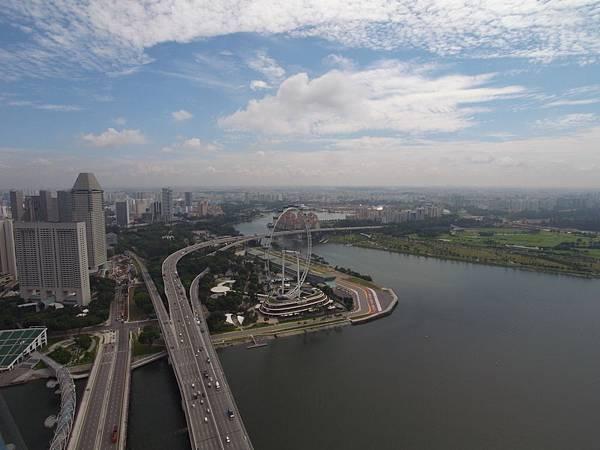 新加坡金沙酒店:SkyPark (10)