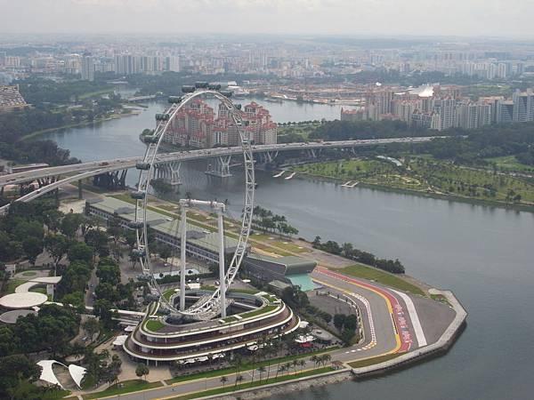 新加坡金沙酒店:SkyPark (11)