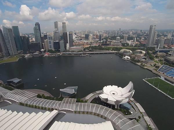新加坡金沙酒店:SkyPark (13)