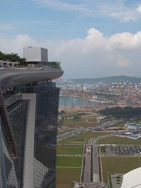 新加坡金沙酒店:SkyPark (15)