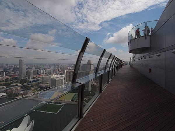 新加坡金沙酒店:SkyPark (16)