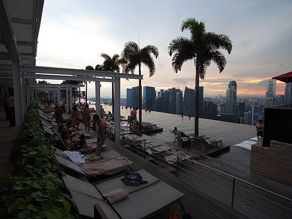 新加坡金沙酒店:SkyPark (17)