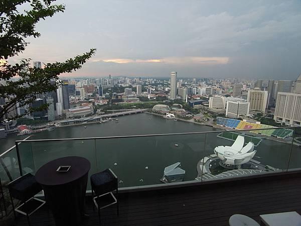 新加坡金沙酒店:SkyPark (18)