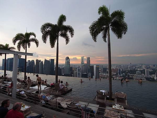 新加坡金沙酒店:SkyPark (19)