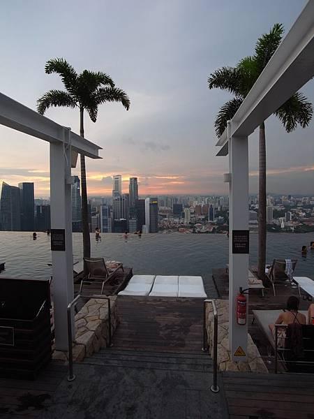 新加坡金沙酒店:SkyPark (20)