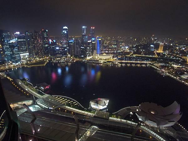 新加坡金沙酒店:SkyPark (21)