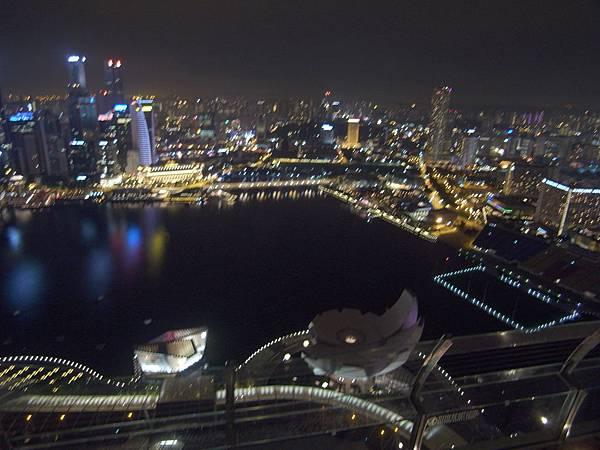 新加坡金沙酒店:SkyPark (23)