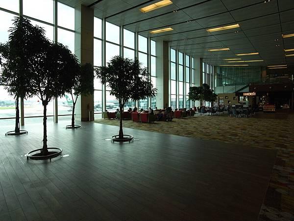 新加坡樟宜機場 (1)