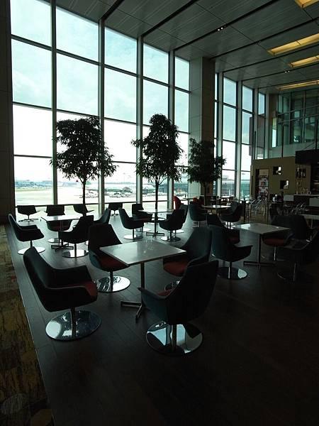 新加坡樟宜機場 (3)