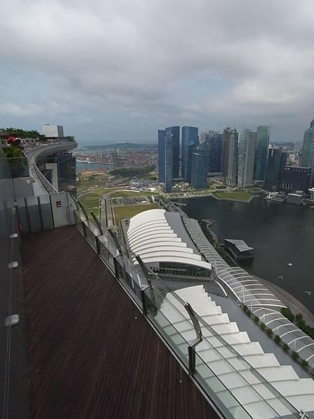 新加坡金沙酒店:SkyPark3 (3)