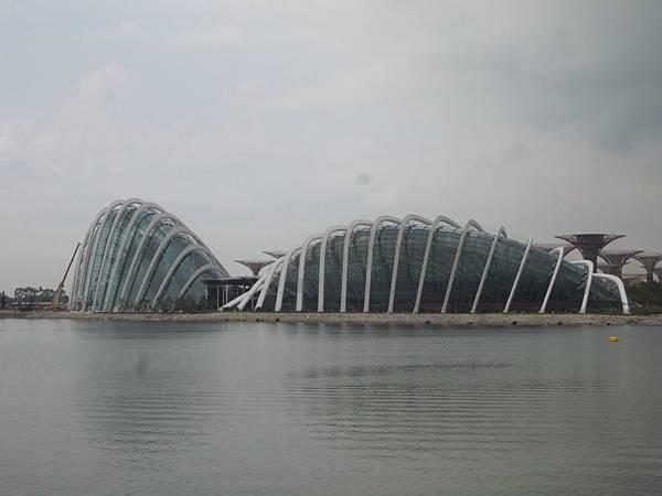新加坡濱海灣花園【盜攝版】2 (3)