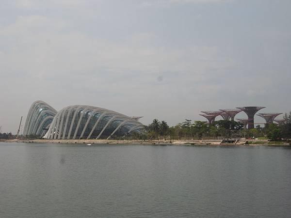 新加坡濱海灣花園【盜攝版】2