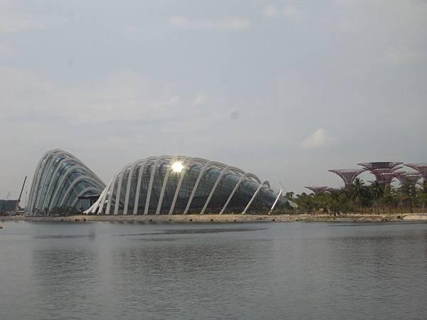 新加坡濱海灣花園【盜攝版】2 (1)