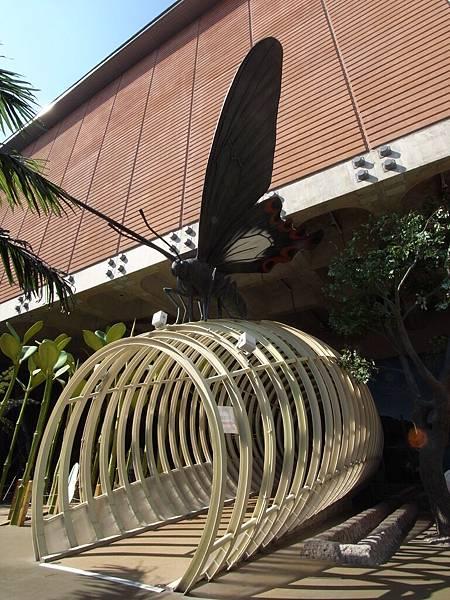 台南市國立台灣歷史博物館 (36)