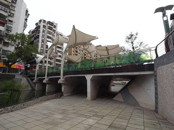 台北縣新莊市中港大排 (26)