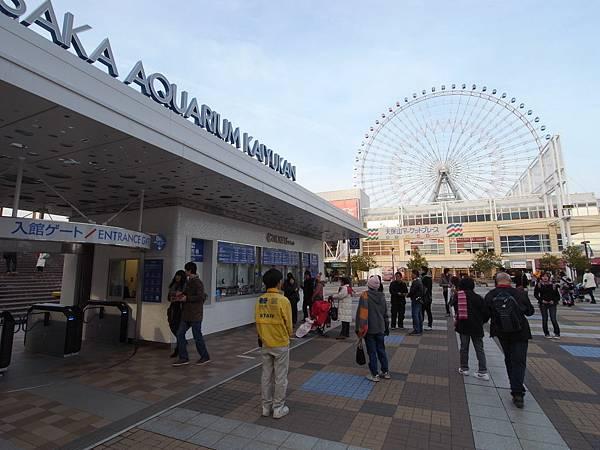 日本大阪市海遊館 (2)