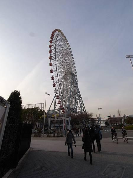 日本大阪市海遊館 (20)