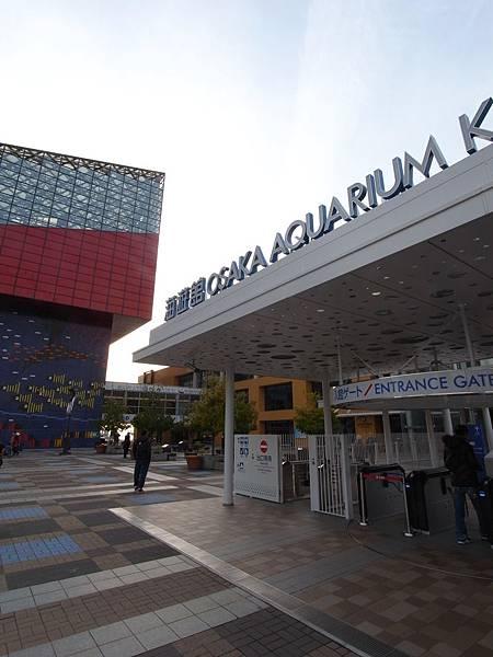 日本大阪市海遊館 (22)