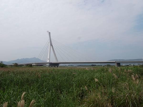 台北市社子大橋 (10)