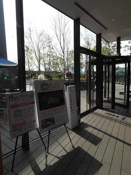 日本東京都東急プラザ 表参道原宿:STARBUCKS+おもはらの森 (8)