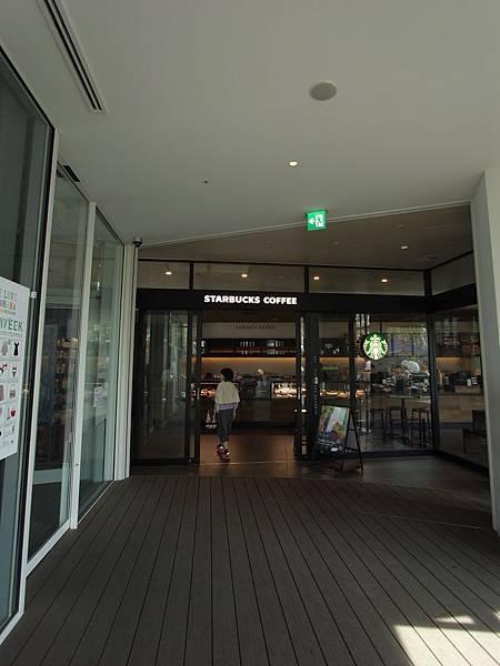 日本東京都東急プラザ 表参道原宿:STARBUCKS+おもはらの森 (11)