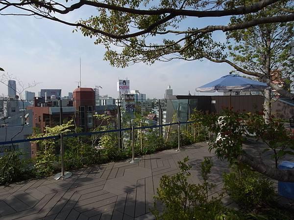 日本東京都東急プラザ 表参道原宿:STARBUCKS+おもはらの森 (17)