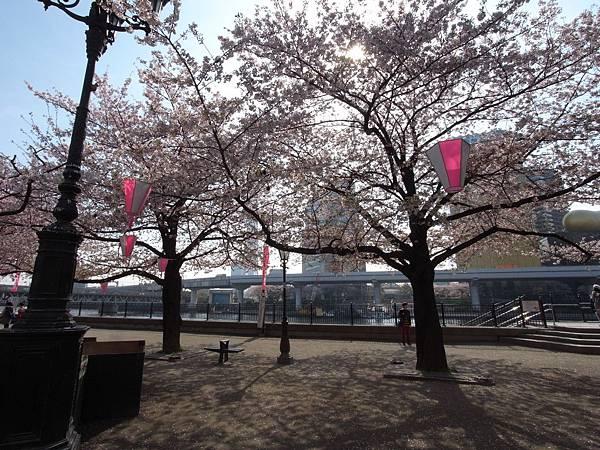 日本東京都隅田川散策 (2)