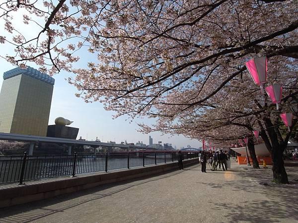 日本東京都隅田川散策 (4)